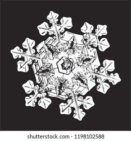 White snowflake isolated on black background. This vector illustration based on macro photo of real snow crystal: elegant star plate with fine hexagonal symmetry, short ornate arms and glossy surface.