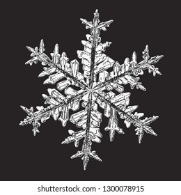 White snowflake isolated on black background. Vector illustration based on macro photo of real snow crystal: beautiful stellar dendrite with fine hexagonal symmetry, ornate shape and complex pattern.