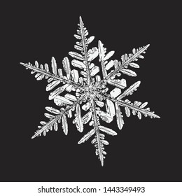 White snowflake isolated on black background. Vector illustration based on macro photo of real snow crystal: beautiful stellar dendrite with fine hexagonal symmetry, ornate shape and complex details.