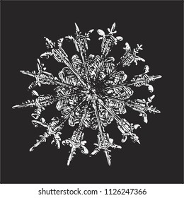 White snowflake on black background. This vector illustration based on macro photo of real snow crystal: rare specimen with twelve thin, elegant arms, fine symmetry and complex inner structure.