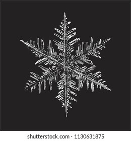 White snowflake on black background. This vector illustration based on real snow crystal macro photo: large stellar dendrite with fine hexagonal symmetry, complex structure and elegant shape.