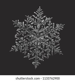 White snowflake on black background. This vector illustration based on macro photo of real snow crystal: complex stellar dendrite with fine hexagonal symmetry, ornate shape and six thin, elegant arms.