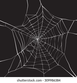 White spider web on dark background