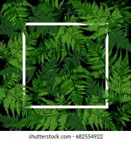 white square frame on tropical leaves, fern plant vector illustration