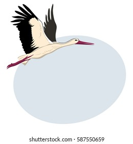 White stork flying (up wings). A beautiful white stork sketch style , side view, vector illustration isolated with place for text.