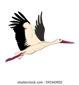 White stork flying (up wings). A beautiful white stork sketch style, side view, vector illustration isolated.