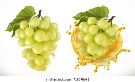 White sweet grapes and juice splash. Fresh fruit, 3d vector icon