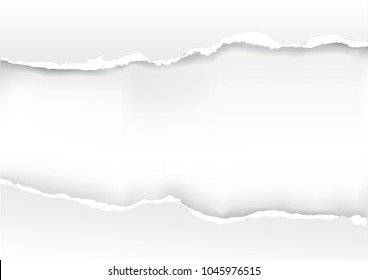 White torn paper background.  Ilustration of white paper backround with place for your text or image.Vector available.