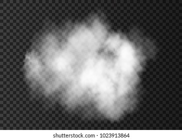White  transparent smoke cloud.  Steam explosion special effect.  Realistic  vector   fire fog or mist texture .