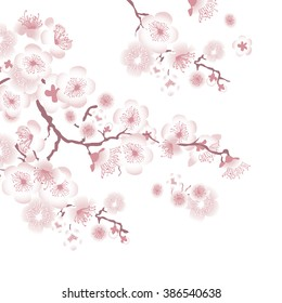 фотообои white tree blossom design element. vector illustration of apple tree blooming. sakura japan cherry branch with blooming flowers