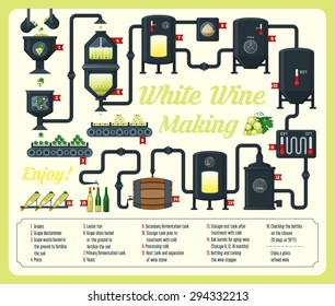 White wine making, infographic