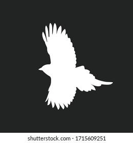 White wing bird silhouette vector design