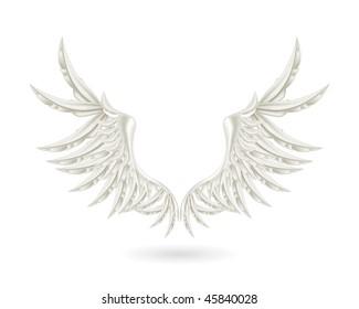White wings, mesh