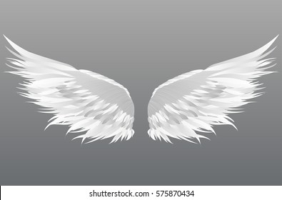 white Wings. Vector illustration on grey background.