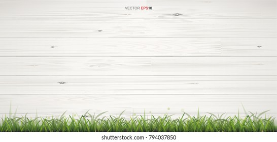 White wood texture with green grass for background. Vector illustration.