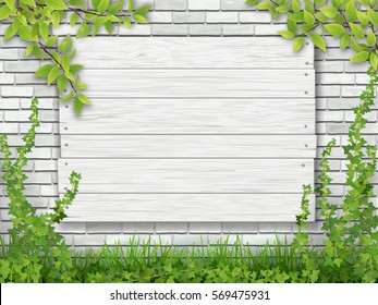 A white wooden sign nailed to the brick wall overgrown with ivy. Green grass and tree branches in the foreground. Vector illustration.