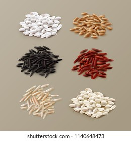White yellow brown black red wild sushi rice grains vector realistic illustration set isolated on background