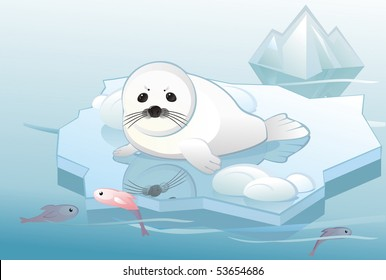 white young seal on ice floe	, ecological concept, vector editable