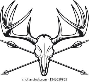 whitetail deer buck skull with crossing hunting arrows