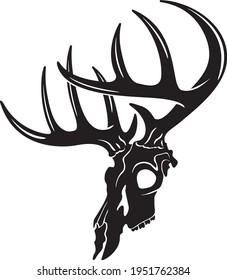 whitetail deer buck skull vector