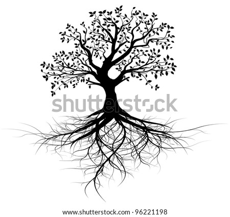 Whole Black Tree Roots Isolated White Stock Vektorgrafik Lizenzfrei