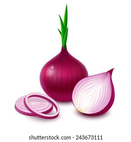 Whole bulb red onion with fresh green sprout, half and rings isolated on white background. Vector illustration.