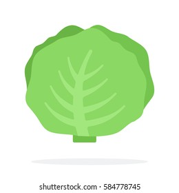 Whole cabbage vector flat material design isolated on white