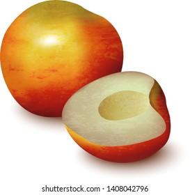 Whole and half of nectarine peach fruit isolated on white background