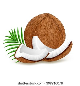 Whole and pieces coconut with leaves isolated on white background. Realistic vector illustration.
