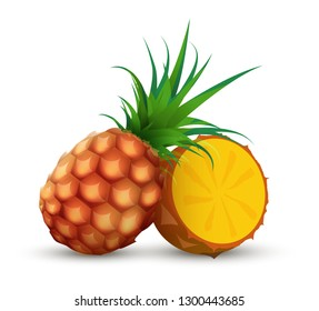 Whole pineapple with half sliced piece of ananas. Vector illustration on white background.