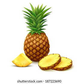 Whole pineapple with round slices and piece isolated on white background. Vector illustration.