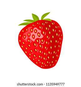 Whole strawberry. Vector color flat illustration for menu, poster. Isolated on white background