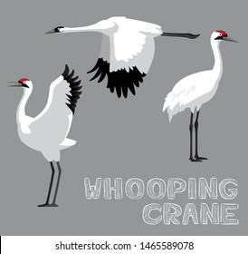 Whooping Crane Cartoon Vector Illustration