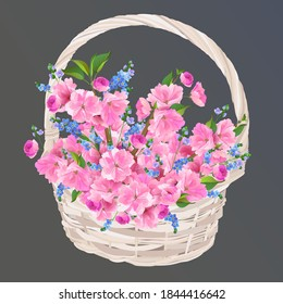 Wicker basket with cherry blossoms and forget-me-nots. A gift for a woman on mother's day in Japan. A bouquet of cherry blossoms on a transparent background. Isolated vector illustrations.