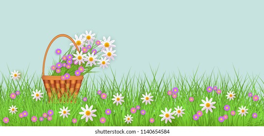 Wicker basket with diasy flowers in green meadow grass with chamomile flowers background. Spring summer sale template for poster and advertising design wtih text space. Vector illustration