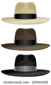 A wide brimmed fedora in classic colors.