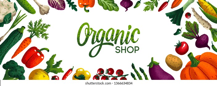 Wide horizontal organic shop background. Copy space. Variety of decorative vegetables with grain texture on white background. Farmers market, Organic food poster, cover or banner design. Vector