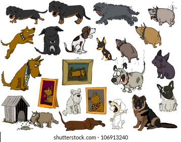 A wide variety of dogs on a white background