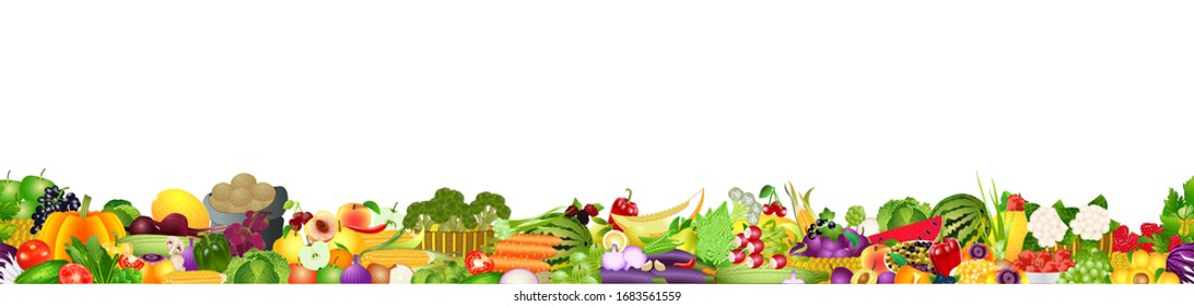 Wide vector collage of fresh fruits and vegetables for layout, isolated on white background. Copy space
