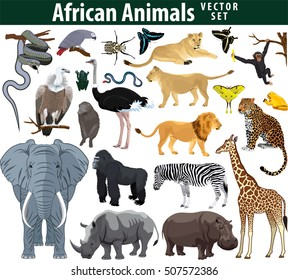Wild african animals set with zebra ostrich lion rhinoceros hippo snake leopard vulture parrot gorilla butterflies giraffe frog isolated vector illustration