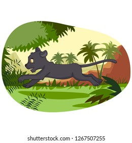Wild animal Panther in jungle forest background in vector