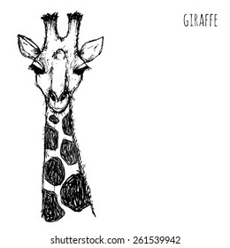 Wild animal safari. Black and white giraffe face drawn pen and ink on a white background Vector  illustration eps10