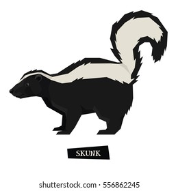 Wild animal Skunk Geometric style