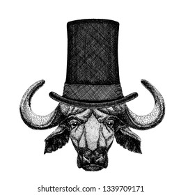 Wild animal wearing top hat, cylinder. Hipster buffalo, bull, ox