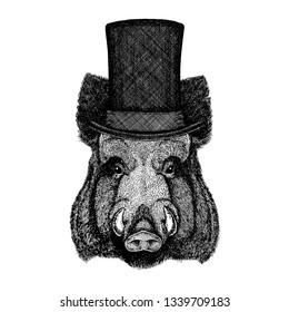 Wild animal wearing top hat, cylinder. Hipster aper, boar, hog