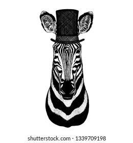 Wild animal wearing top hat, cylinder. Hipster zebra