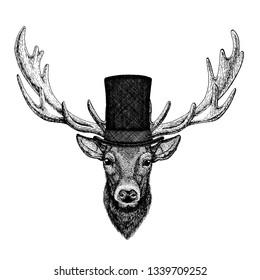 Wild animal wearing top hat, cylinder. Hipster deer