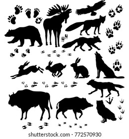 Wild animals and birds silhouette