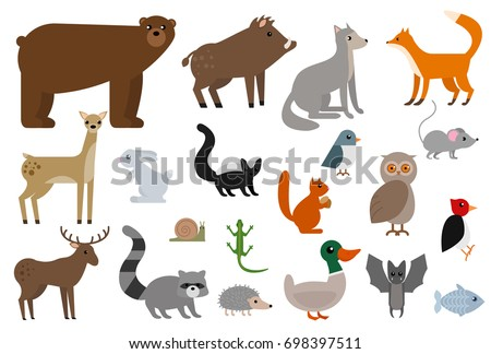 Wild animals elements collection