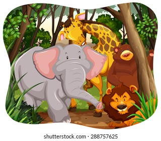 Wild animals in the middle of a jungle